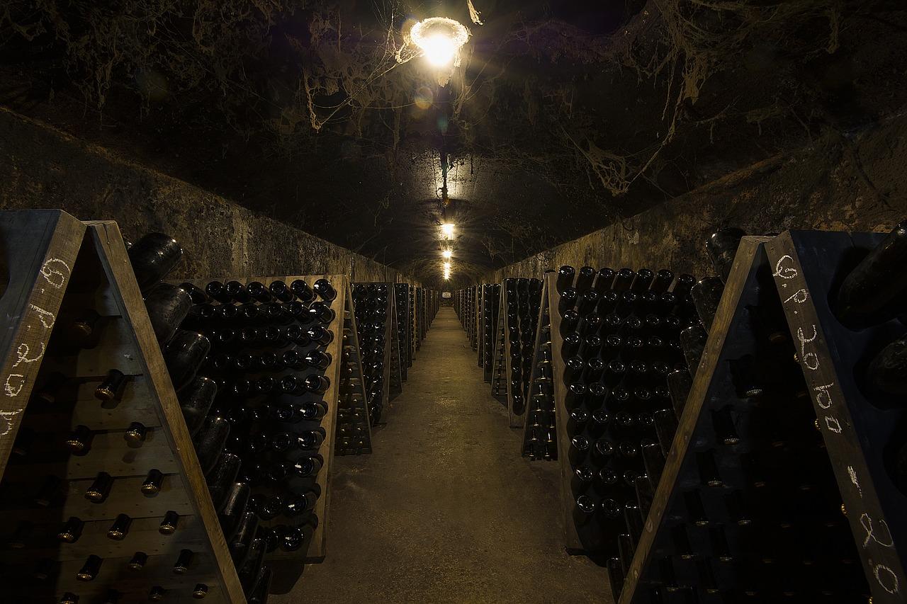 Tout ce qu'il faut savoir sur les caves à vin
